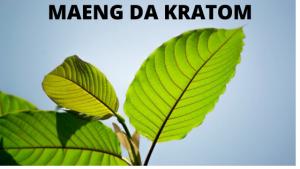 Mang Da Kratom leaf