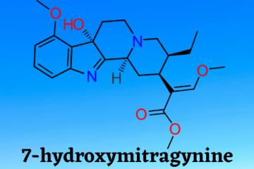 7-hydroxymitragynine