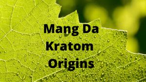 Mang Da Kratom Strain