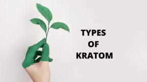 TYPES OF KRATOM PLANT
