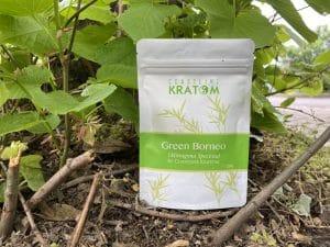 coastline kratom review kratom for sale