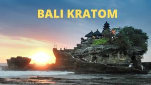 Bali Kratom for sale