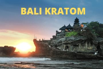 Bali kratom effects