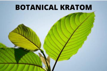 Botanical Kratom