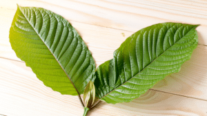 is kratom going to be illegal in my state