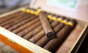 cigar shop kratom seattle