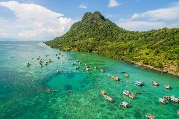 where to order green borneo kratom for sale