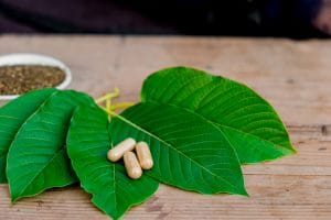 what is the Best Online Store to Buy Kratom