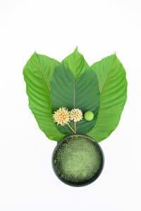 buy amazing botanicals kratom capsules